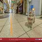 Cat Street View is an official thing now