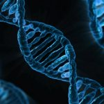 Microsoft looking into using DNA as digital storage
