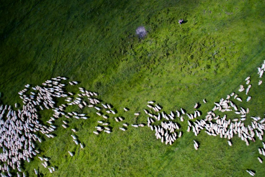Drone-Photography-Second-nature