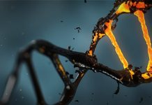 DNA Decay