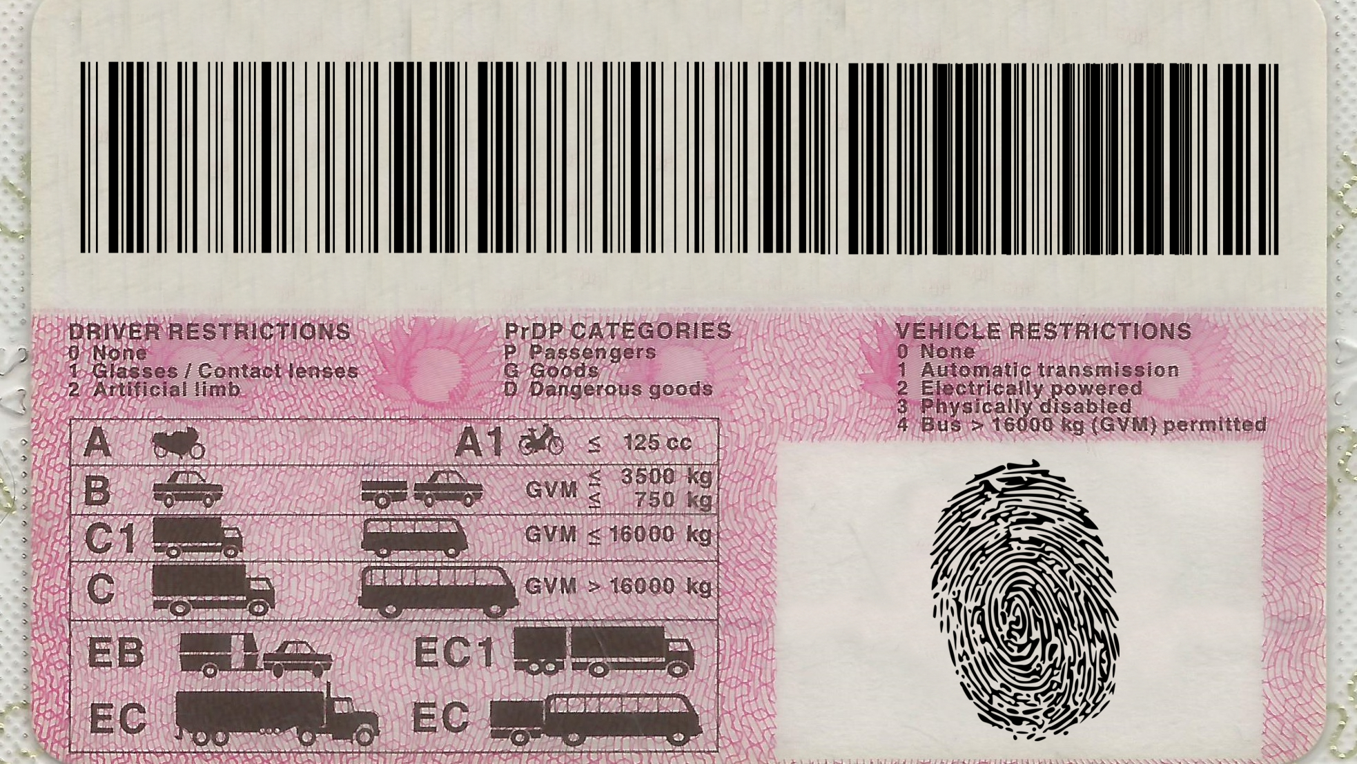 Renewing your South African driver's licence: How to book