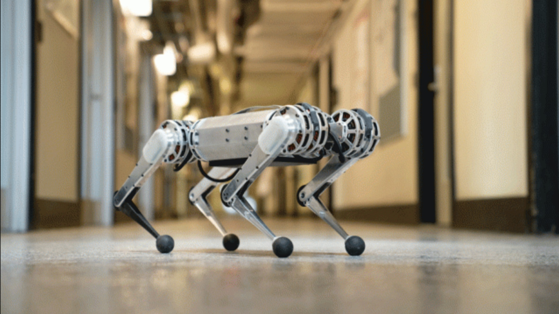 MIT Mini Cheetah Robot Can Jump Backwards And Trot